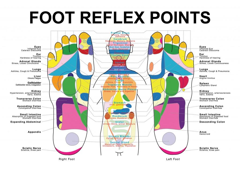 foot reflex A4 b